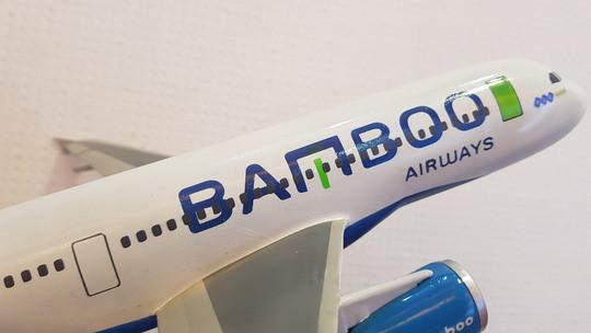 FLC đã quyết định rót thêm tiền để tăng vốn Bamboo Airways lên 1.300 tỷ đồng. Ảnh: FLC.